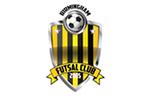 Birmingham Futsal Club
